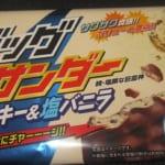 ビッグサンダー(クッキー&塩バニラ)