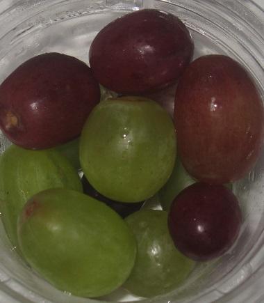 期間限定旬のフルーツ