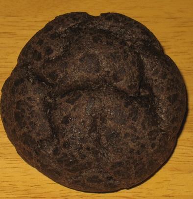 炭火焼肉たむら 本格炭チョコシュークリーム